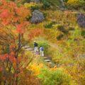 【日本一の紅葉!】栗駒山の秋 ピクニックコース!