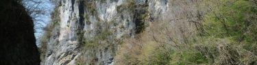 猊鼻渓の景色の写真