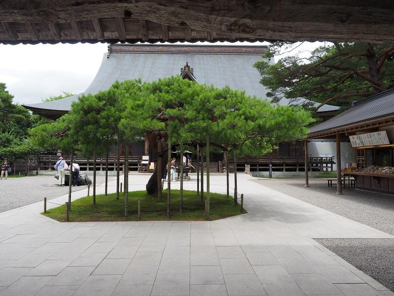 中尊寺の風景写真