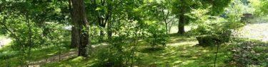 ベリーノ久保川イーハトーブ自然