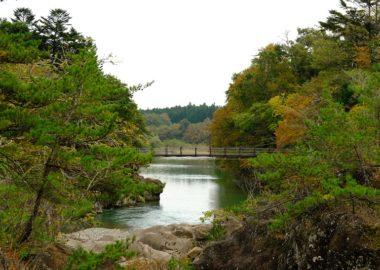 厳美渓の紅葉の写真10月24日