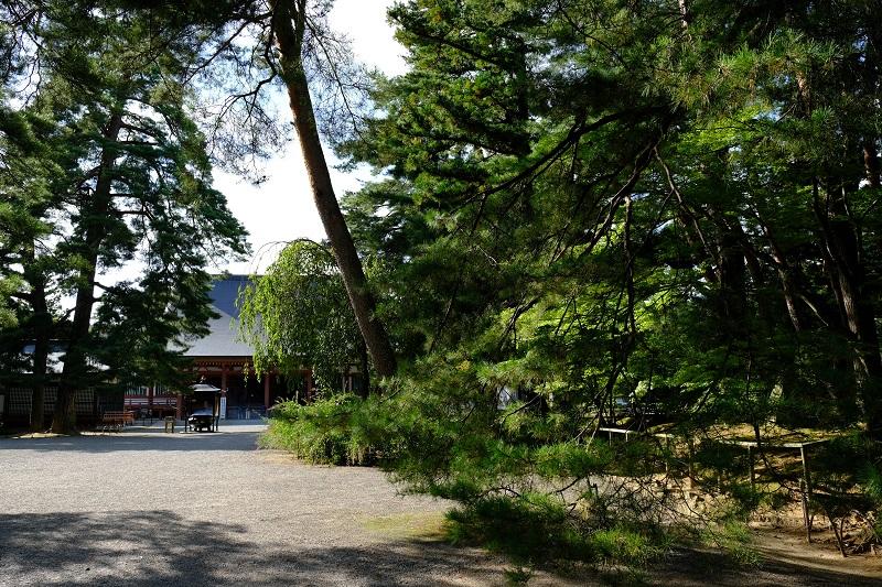 毛越寺本堂の入り口の風景写真