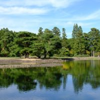 毛越寺の大泉ヶ池の風景写真