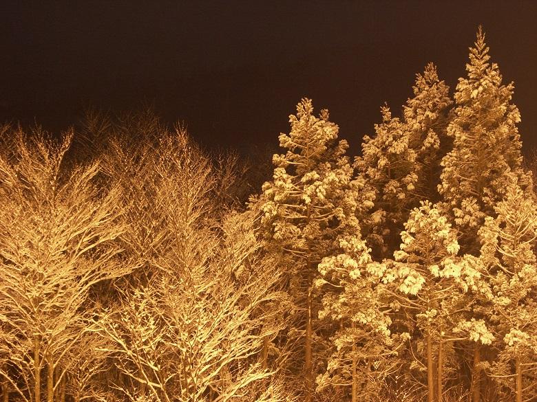 一関祭畤の冬5