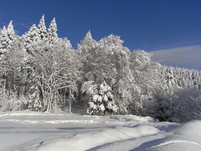 一関祭畤の冬2